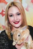 Κορίτσι και pygmy κουνέλι Στοκ εικόνα με δικαίωμα ελεύθερης χρήσης