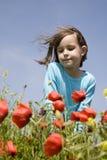 κορίτσι καλαμποκιού λίγ&et Στοκ εικόνα με δικαίωμα ελεύθερης χρήσης
