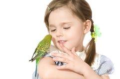 κορίτσι λίγος παπαγάλος Στοκ φωτογραφία με δικαίωμα ελεύθερης χρήσης