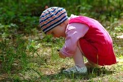 κορίτσι λίγο δάσος στοκ φωτογραφία με δικαίωμα ελεύθερης χρήσης