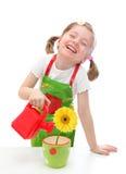 κορίτσι μαργαριτών λίγο πότ& Στοκ Εικόνες