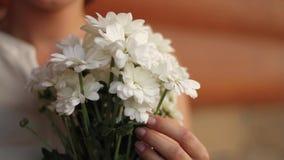 Κορίτσι με μια ανθοδέσμη των λουλουδιών των chamomiles απόθεμα βίντεο
