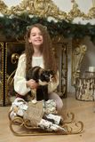 Κορίτσι με μια γάτα στα όπλα της από την εστία στα Χριστούγεννα στοκ φωτογραφία με δικαίωμα ελεύθερης χρήσης