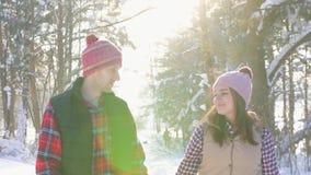 Κορίτσι με μια περπατώντας εκμετάλλευση νεαρών άνδρων προς το χέρι, χαμόγελο, που περπατά κατά μήκος του χειμερινού πάρκου, μια η φιλμ μικρού μήκους