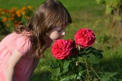 κορίτσι με τα κόκκινα τριαντάφυλλα Στοκ Εικόνες
