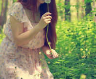Κορίτσι με τον πράσινο τομέα dandelionson Στοκ Εικόνες