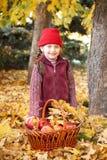 Κορίτσι με το καλάθι μήλων στη δασική τοποθέτηση φθινοπώρου, τα κίτρινα φύλλα και τα δέντρα στο υπόβαθρο Στοκ Εικόνα