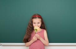 Κορίτσι με το ροδαλό λουλούδι κοντά στο σχολικό πίνακα Στοκ φωτογραφίες με δικαίωμα ελεύθερης χρήσης