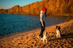 Κορίτσι με το σκυλί κόλλεϊ δύο συνόρων στην παραλία στην παραλία κίτρινο δάσος φθινοπώρου στο υπόβαθρο στοκ φωτογραφίες
