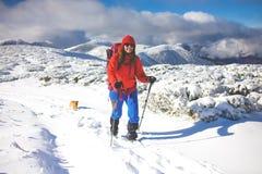 Κορίτσι με το σκυλί στα χειμερινά βουνά Στοκ Φωτογραφία
