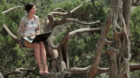 Κορίτσι με το lap-top στη φύση απόθεμα βίντεο