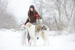 Κορίτσι με δύο greyhounds το χειμώνα, μειωμένο χιόνι Στοκ Εικόνα