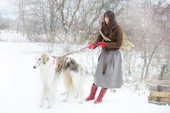 Κορίτσι με δύο greyhounds το χειμώνα, μειωμένο χιόνι Στοκ Φωτογραφίες