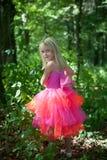 κορίτσι νεράιδων κοστο&upsilon στοκ φωτογραφία με δικαίωμα ελεύθερης χρήσης