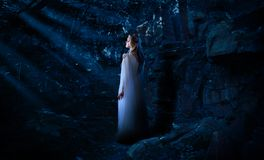 Κορίτσι νεραιδών στη δασική έκδοση νύχτας στοκ εικόνα