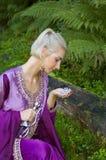 κορίτσι νεραιδών Στοκ φωτογραφίες με δικαίωμα ελεύθερης χρήσης