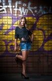 Κορίτσι ομορφιάς που θέτει τη μόδα κοντά στον τούβλινο τοίχο στην οδό Στοκ φωτογραφία με δικαίωμα ελεύθερης χρήσης