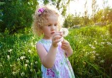 κορίτσι πικραλίδων λίγα Στοκ εικόνα με δικαίωμα ελεύθερης χρήσης