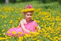 κορίτσι πικραλίδων Στοκ φωτογραφίες με δικαίωμα ελεύθερης χρήσης