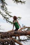 Κορίτσι που αναρριχείται στο δέντρο στοκ φωτογραφία