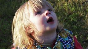 Κορίτσι που εξετάζει τα πουλιά απόθεμα βίντεο