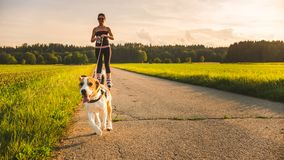 Κορίτσι που κάνει πατινάζ με το σκυλί λαγωνικών υπαίθρια στη φύση στοκ φωτογραφία με δικαίωμα ελεύθερης χρήσης