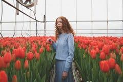 Κορίτσι που κοιτάζει κάτω στο θερμοκήπιο πορτοκαλιών Στοκ Εικόνες