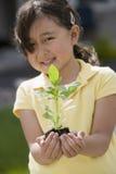 κορίτσι που κρατά λίγο φυτό Στοκ φωτογραφία με δικαίωμα ελεύθερης χρήσης