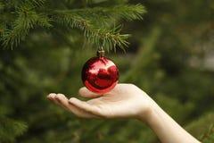 Κορίτσι που κρεμά τη διακοσμητική σφαίρα παιχνιδιών στον κλάδο χριστουγεννιάτικων δέντρων Στοκ Φωτογραφίες