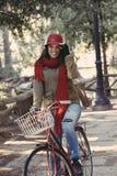 Κορίτσι που οδηγά το αναδρομικό ποδήλατο στο πάρκο στην εποχή πτώσης στοκ εικόνες