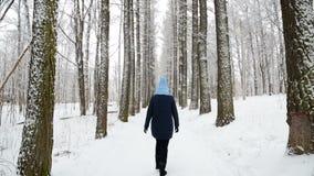 Κορίτσι που περπατά στα ξύλα στο άλσος πίσω απόθεμα βίντεο