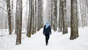 Κορίτσι που περπατά στα ξύλα απόθεμα βίντεο