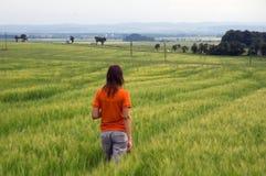 Κορίτσι που περπατά στο πεδίο που αγνοεί το δάσος και την κοιλάδα στοκ εικόνα