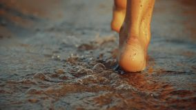 Κορίτσι που περπατεί στην υγρή άμμο της ακτής Πόδια της νέας γυναίκας που πηγαίνουν κατά μήκος της ωκεάνιας παραλίας κατά τη διάρ απόθεμα βίντεο