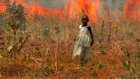 Κορίτσι που πιάνεται στην πυρκαγιά θαμνότοπων απόθεμα βίντεο