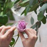 Κορίτσι που προετοιμάζει τα λουλούδια για την ανθοδέσμη Στοκ φωτογραφίες με δικαίωμα ελεύθερης χρήσης