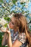 Κορίτσι που ρουθουνίζει και που απολαμβάνει ένα ανθίζοντας δέντρο στοκ εικόνες