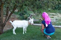 Κορίτσι που ταΐζει την άσπρη αίγα 1 στοκ εικόνα