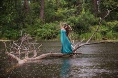 Κορίτσι που φορά το φόρεμα που στέκεται στον ποταμό κοντά στο δάσος Στοκ εικόνα με δικαίωμα ελεύθερης χρήσης