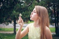 Κορίτσι που φυσά στην άσπρη πικραλίδα Στοκ Εικόνα
