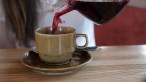 Κορίτσι που χύνει το κόκκινο τσάι στο φλυτζάνι στον καφέ απόθεμα βίντεο