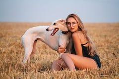 Κορίτσι σε έναν τομέα με ένα σκυλί Στοκ φωτογραφία με δικαίωμα ελεύθερης χρήσης