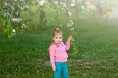 Κορίτσι σε ένα ρόδινο πουλόβερ που κρατά έναν κλάδο της Apple Στοκ Φωτογραφίες