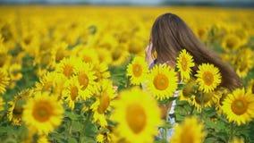 Κορίτσι στα λουλούδια ηλίανθων απόθεμα βίντεο