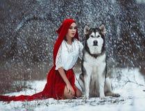Κορίτσι στην οδηγώντας κουκούλα Little Red κοστουμιών με το σκυλί malamute όπως το α Στοκ Εικόνα