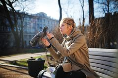 Κορίτσι στον πάγκο που κτυπά ένα περιστέρι Στοκ Φωτογραφίες