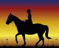 Κορίτσι στο άλογο - εκπαίδευση αλόγου σε περιστροφές στο backdround του ηλιοβασιλέματος Στοκ Εικόνες