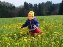 Κορίτσι στο λιβάδι λουλουδιών Στοκ φωτογραφία με δικαίωμα ελεύθερης χρήσης