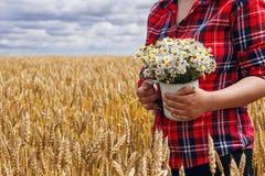 Κορίτσι στο κόκκινο πουκάμισο που στέκεται στον τομέα σίτου και που κρατά την ανθοδέσμη των μαργαριτών Στοκ φωτογραφία με δικαίωμα ελεύθερης χρήσης