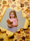 Κορίτσι στο φόρεμα φθινοπώρου διάστημα αντιγράφων για τη διαφήμιση παιχνίδι παιδιών Η πτώση φύλλων είναι μια όμορφη και ζωηρόχρωμ στοκ φωτογραφία